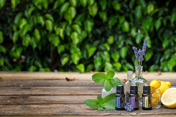 doTERRA health and wellness information sessions